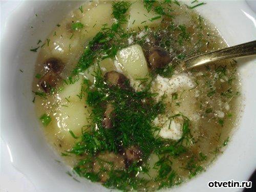 Как приготовить вкусный суп из сухих грибов