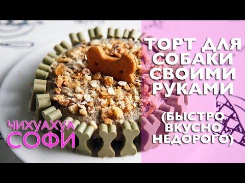 Торт Собачка (Как вариант украшения) пошаговый рецепт 70